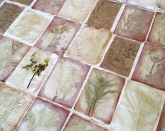 workshop Eco Printen op stof en papier