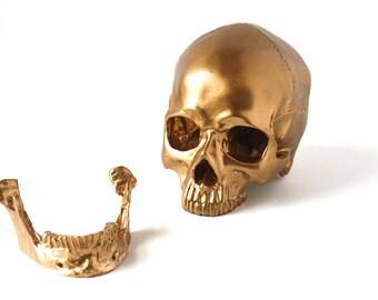 Gold Decorative Skull