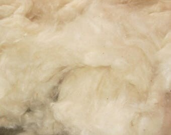 High Quality KAPOK FIBER - Plant fiber for stuffing