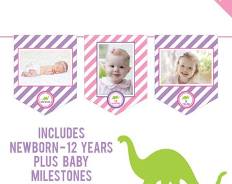 INSTANT DOWNLOAD Pink Dinosaur Party - DIY printable photo banner kit - Includes Newborn through 12 Years, Plus Baby Milestones