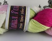 DESTASH Family Pendragon Arthur 100% Superwash Merino Sport Weight Sock Yarn 'Bed of Roses 1'