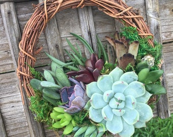 """6"""" Succulent Wreath (Made-to-Order)"""