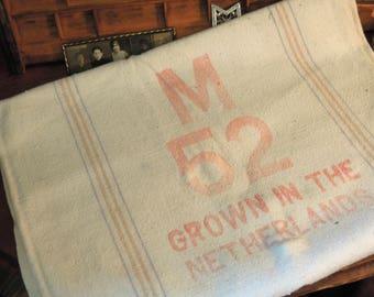 Vintage Antique Linen Grain Sack / Netherlands Farmhouse Grain Sack / Antique European Grain Sack / Red and Blue Stripe