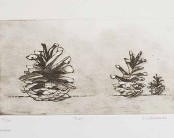 Original drypoint etching pine cones woods forest floor sepia print still life study print three of edition of twenty