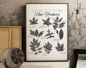 "Native New York Trees Print |  14"" x 18"" Illustration 