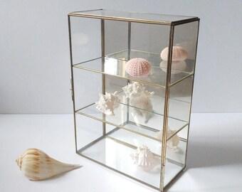 Glass display case, glass curio shelves, mirrored back, brass and glass case, specimen display shelves