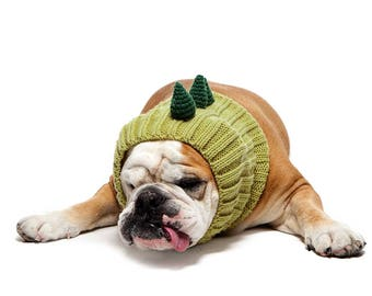Dinosaur Dog Snood | Knit Crochet Dog Hat | Dog Costume | Winter Scarf | Ear Warmer