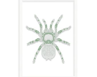 Green Spider A3 (297mm x 420mm) - Instant Download Only