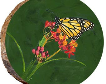 Monarch Butterfly - DAJ002