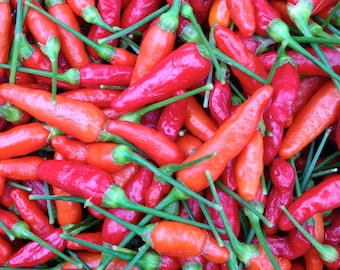 Hawaiian Hot Peppers, Dried Ni'oi Chili Peppers, Exotic Tropoical Spices, Grown in Hawaii