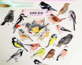 British Birds Sticker Pack - Illustrated Stickers - Planner Stickers - Bullet Journal Stickers - Hand Cut Stickers - British Nature