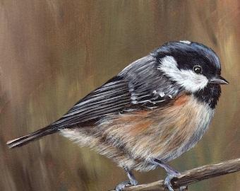 SALE Bird Painting Art Coal Tit Bird SFA Wildlife Original hand painted bird acrylic painting by Australian Artist Janet M Graham