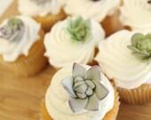Edible Fondant Sugar Flower SUCCULENTS - 20 mini succulents,  for wedding cake, modern wedding