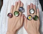 terrarium rings, dandelion jewelry, dandelion seed, dandelion ring, Dandelion wish, lavender ring, moss ring, daisy ring