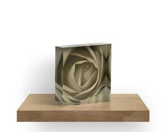 Rose Acrylic Block, Sepia Flower Shelf Sitter, Mantle Art, Small Art, Acrylic Photo Block, Fine Art Nature Shelf Sitter, Flower Home Decor