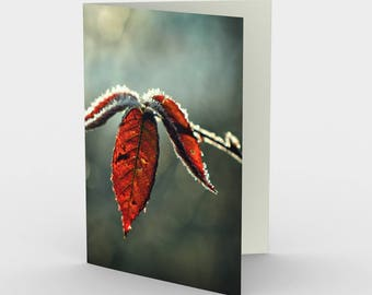 Autumn Leaf Cards, Blank Note cards, Nature Note Cards, Greeting Cards, Three Note Cards, 5x7 Cards, Fall Leaf Art Card, All Occasion Cards