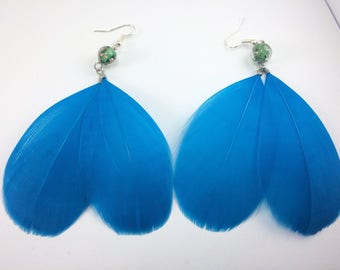 Bright blue feather earrings