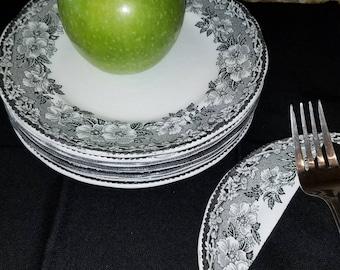 Vintage 1930s Enoch Wedgewood Turstall Malverne Transferware Set of 8 Salad Dessert Plates Dogwood