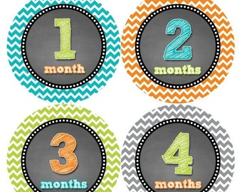 Monthly Stickers Monthly Baby Stickers Baby Month Milestone Stickers Baby Month Stickers Month to Month Bodysuit Stickers Shower Gift 419