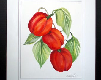 Three Red Peppers On A Vine Original Watercolot Painting