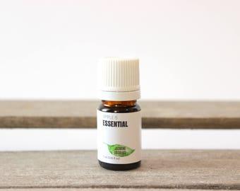 Jasmine Essential Oil (Jasmine Absolute Oil) - Jasminum officinale Essential Oil, Floral Scent, Jasminum grandiflorum, Expensive Pure EO
