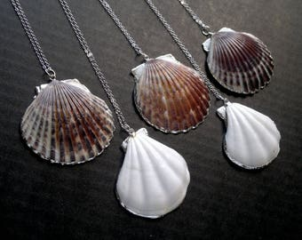 Sea Shell Necklace Silver Edged Shell Neсklace Shell Pendant Shell Jewelry White Electroplated Shell Necklace Silver Dipped Natural Shell