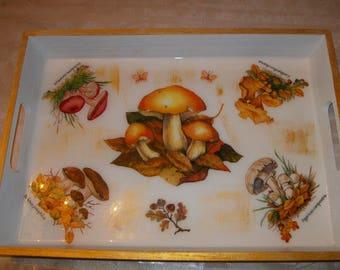 """Tray """"Fond of mushrooms?"""""""