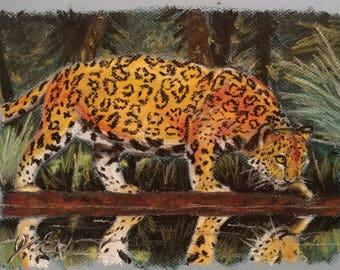 The Wild - Art Print