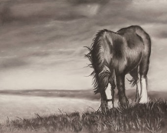 Lynemouth Horse - Limited Edition Mounted A3 print of a moorland horse
