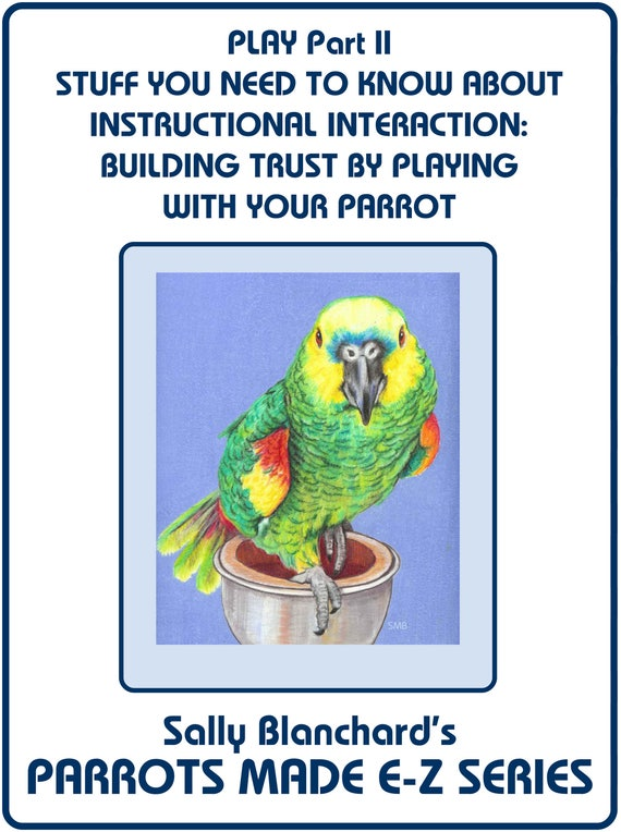 PLAY PART II: Instructional Interaction - Building Trust Through Play .pdf