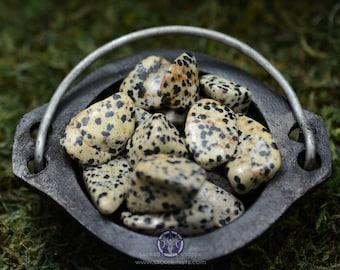 Dalmatian Stone ~ Tumbled