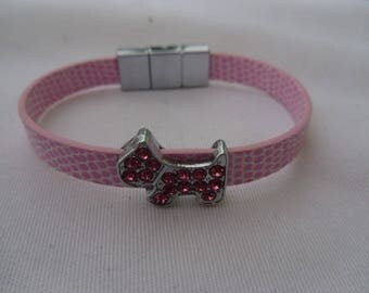 small dog or puppy collar