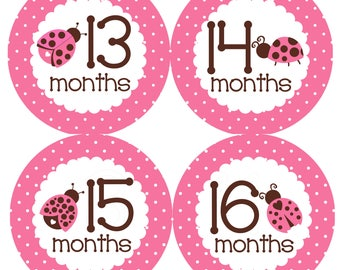 Pink & Brown Ladybug Year 2 Monthly Onesie Stickers Second Year 13 to 24 months