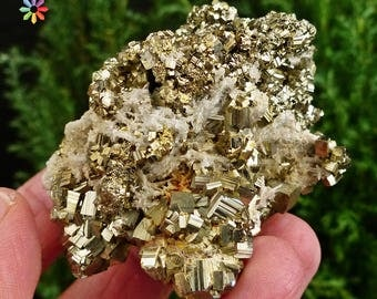 Amazing Pyrite (Fool's Gold), Quartz, Crystal, Mineral, Natural Crystal