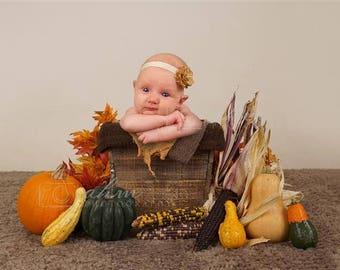 Digital Newborn Backdrop Harvest time Bucket. One of a kind Prop!