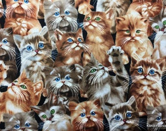 Cat Fabric By the Yard , HY Feline Kitten All Over Cats Cotton Quilting Apparel Fabric