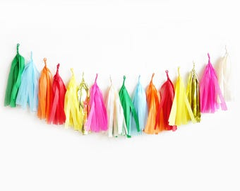 Carnival Tassel Garland - fringe tissue banner by oh shiny paper co