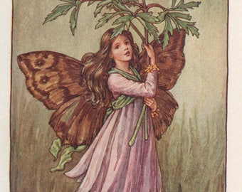 Flower Fairies: The WINDFLOWER FAIRY Vintage Print c1930 by Cicely Mary Barker
