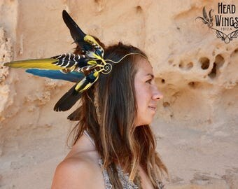 Feather crown HEADWING with amazing zebra-striped feathers and striking colours - black, white, yellow