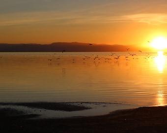 Digital Download, Sunset Lake Wall Art, Nature Photography Download, Printable Wall Art, Landscape Print, Wall Decor