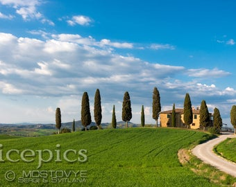 Old house and cypresses downloadable digital art print