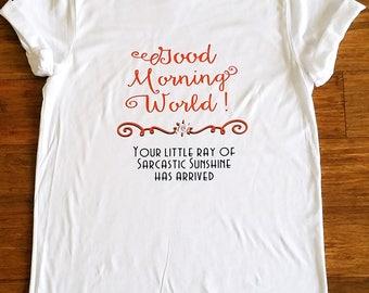 Good morning sunshine world shirt, little ray of sarcastic sunshine has arrive, morning t-shirt, Sarcastic t-shirt, not a morning person tee