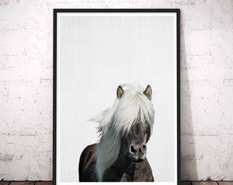 horse photography horse decor art wild horse photography black white horse horse - Horse Decor