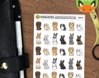 Rabbits - Pet Bunny Rabbit Vet - Planner Stickers (C0019)