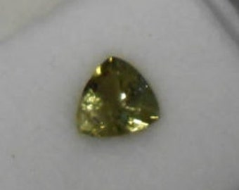 1.0ct  faceted Green Tourmaline