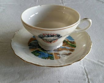 vintage glacier national park teacup & saucer set - irridescent photos montana goat ram st mary mt clement grinnell trick falls art picture