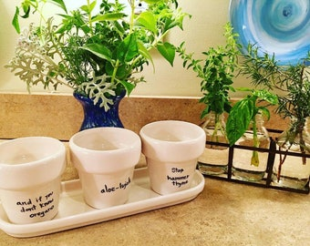 Tri-Pot Pun Planter - Custom Available