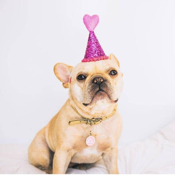 Dog Party Hat || Heart Headband ||February Birthday || Pink and Red || Love