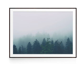 Forest Poster, Forest Print, Scandi Print, Nordic Photography, Forest Poster Art, Forest Wall Art, Forest Photography, Forest Print Large