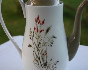Vintage Queen Anne 'NYMPH' Coffee Pot - Vintage Coffee Pot with Meadow grasses - Made in England